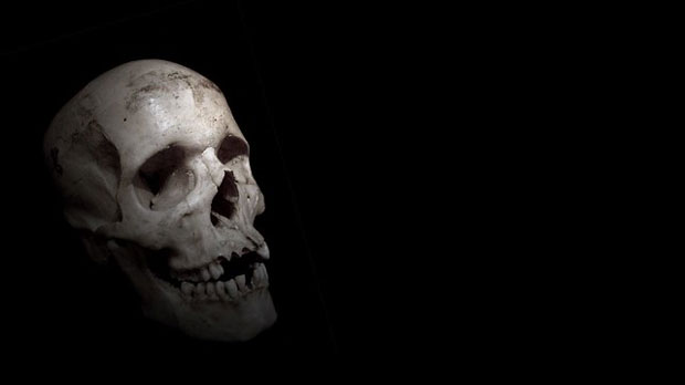 """""""Skull"""" by Ben Francis licensed under CC BY 2.0"""