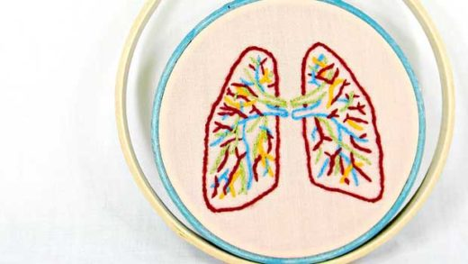 """""""Small Anatomical Lungs Hand Embroidery Wall Decor"""" by Hey Paul Studios licensed under CC BY 2.0"""