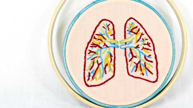 """Small Anatomical Lungs Hand Embroidery Wall Decor"" by Hey Paul Studios licensed under CC BY 2.0"