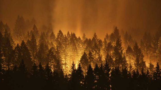 FILE - In this Sept. 5, 2017, file photo, the Eagle Creek wildfire burns on the Oregon side of the Columbia River Gorge near Cascade Locks, Ore. An Oregon lawmaker has lashed out at restrictions on logging, blaming them for the intensity of wildfires plaguing much of the U.S. West. (Genna Martin /seattlepi.com via AP)