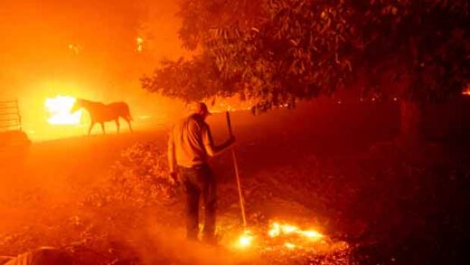 Man and horse inside the fires