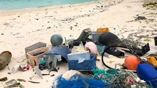 plastic and other debris sits on the beach