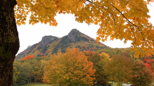 The Grandfather Mountain