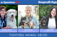 Preventing Animal Abuse and Neglect   Nonprofit Report