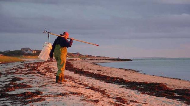 """""""Old Fisherman - Cape Cod"""" by Roy Saplin licensed under CC BY 2.0"""