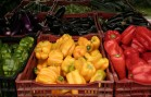 Eliminating Food Waste, Beginning in our Local Grocery Stores
