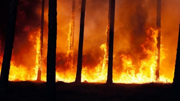 """""""Forest fire"""" by Ervins Strauhmanis licensed under CC BY 2.0"""