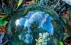 Trials for the Paris Agreement on Climate Change