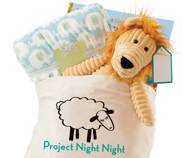 """Brand new """"night night"""" totes are filled with three standard items and delivered to thousands of children every year. Photo Courtesy of: Project Night Night."""