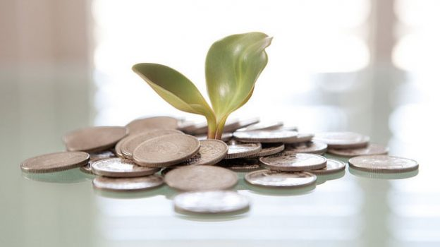 """""""Money Plant"""" by Tax Credits licensed under CC BY 2.0"""