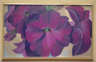 Preview: Colin B. Bailey on Georgia O' Keeffe's Petunias