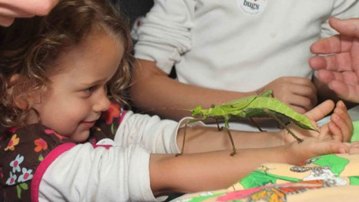 """Kids with phasmid"" Photo courtesy of SaveNature.Org"